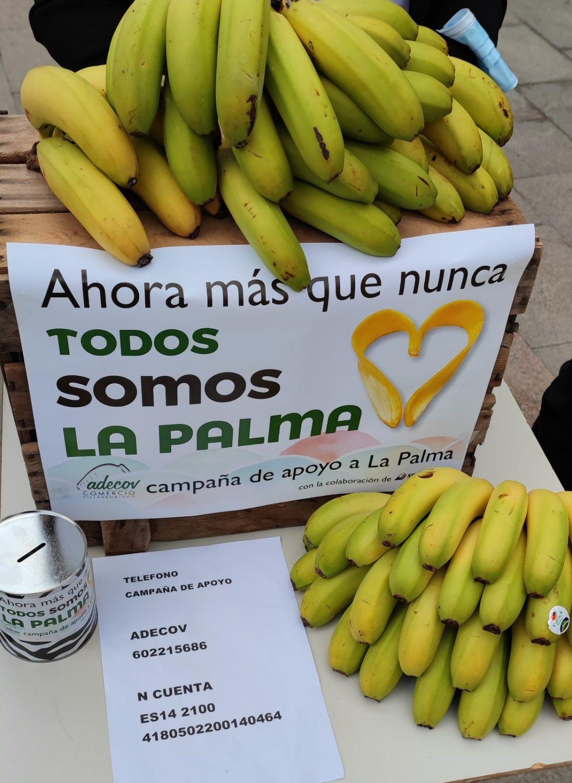 Campaña apoyo a la Isla de la Palma de ADECOV 2